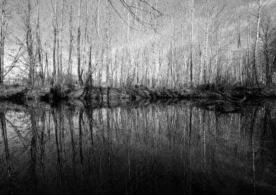 Reflection | Ⓒ JCNicholson