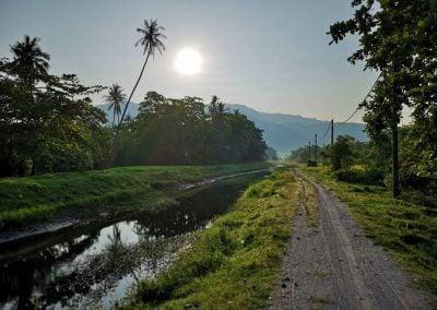 Irrigation, Penang | Ⓒ JCNicholson