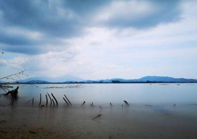 Driftwood, Lankawi | Ⓒ JCNicholson